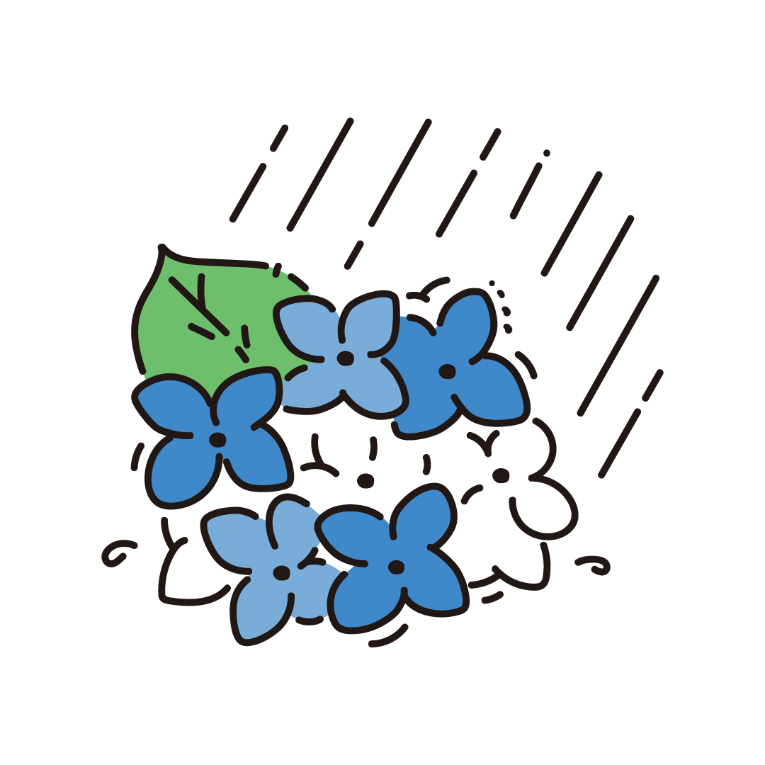 紫陽花と雨のイラスト