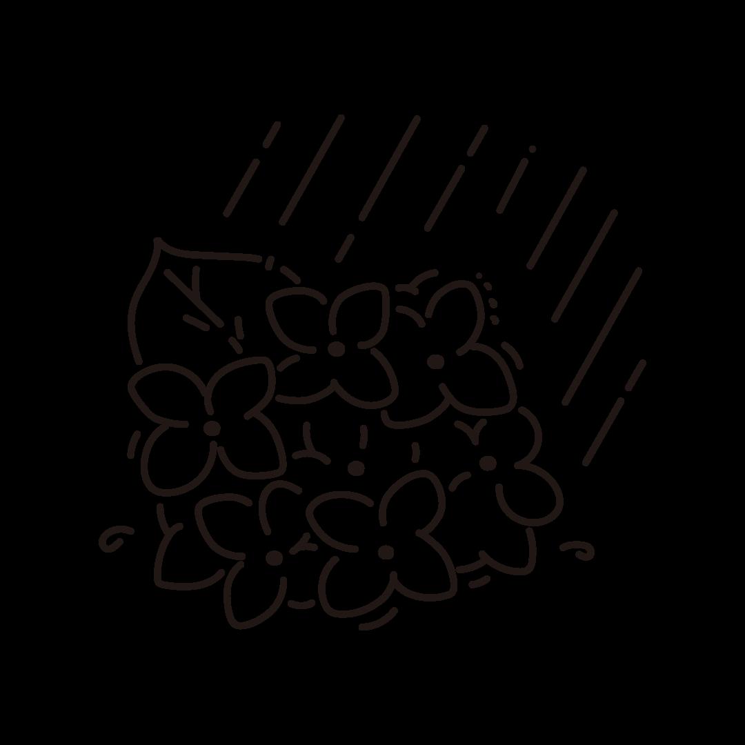 紫陽花(あじさい)と雨のイラスト (線のみ)