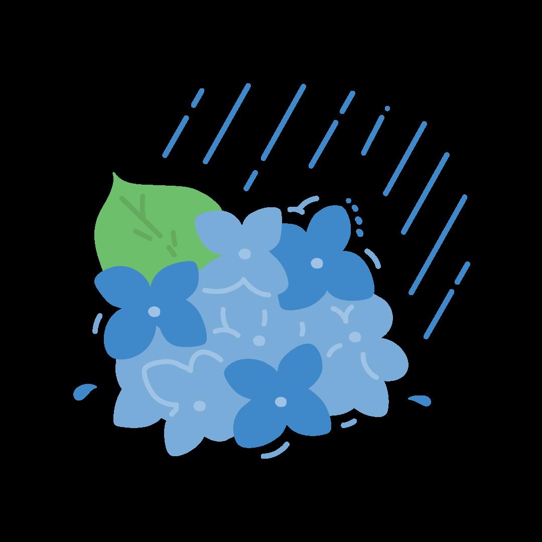 紫陽花(あじさい)と雨のイラスト (塗り)