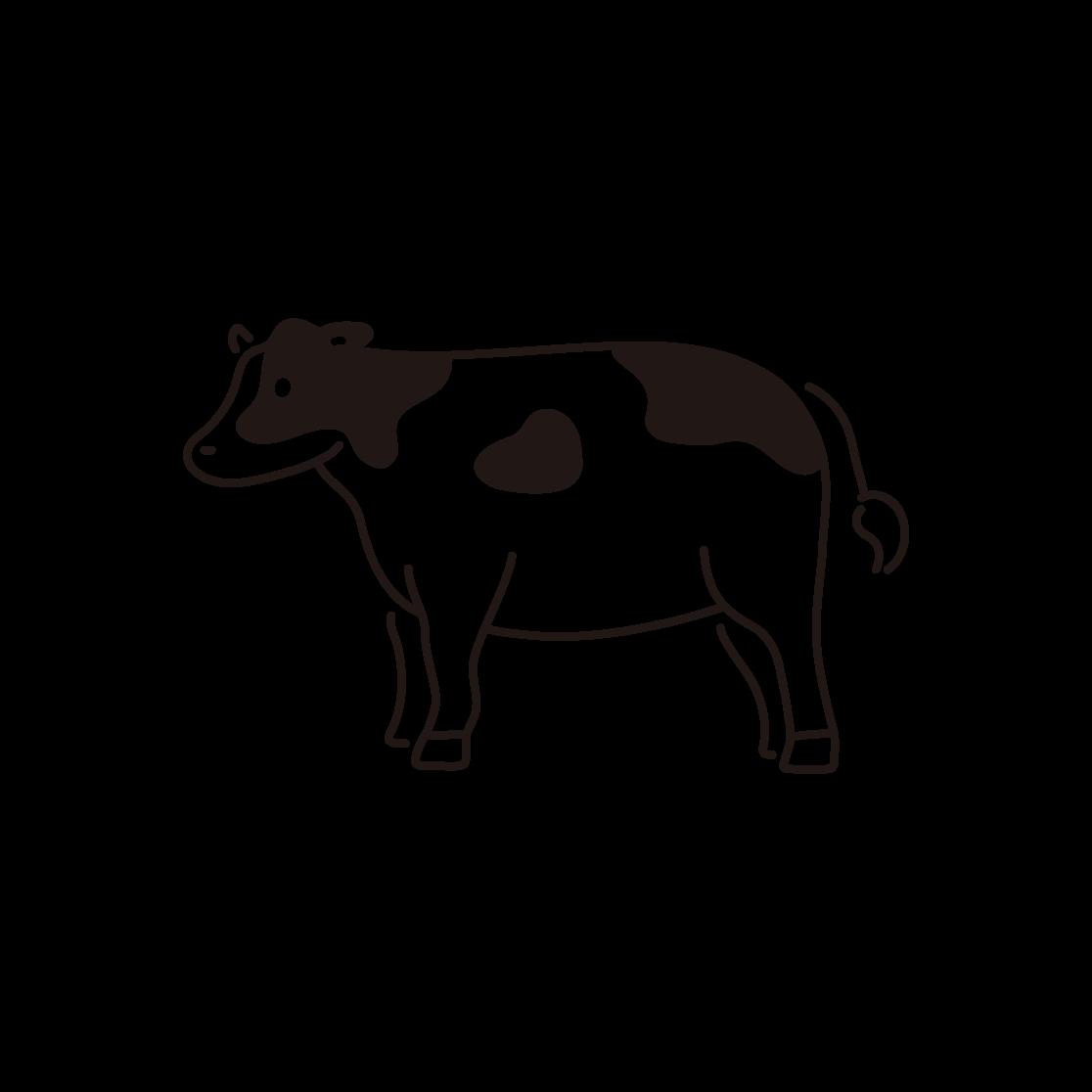 牛の線画イラスト