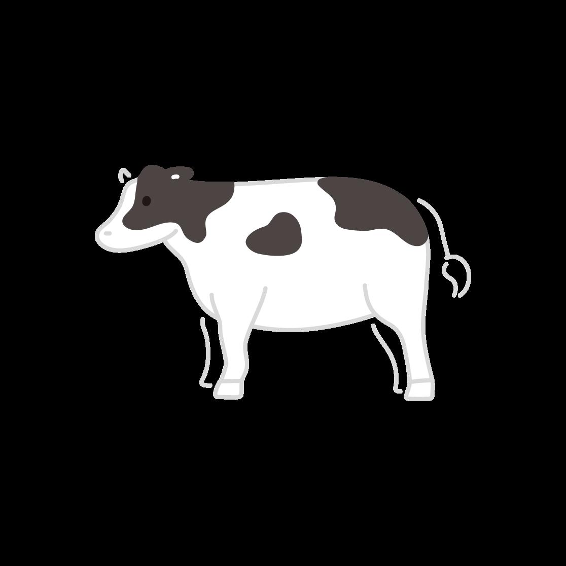 牛の塗りイラスト